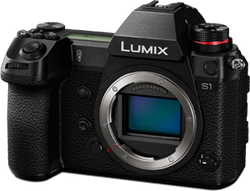 Panasonic Lumix S1 for sale on Swappa