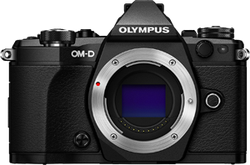 Olympus OM-D E-M5 Mark II for sale on Swappa