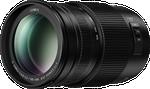 Panasonic Lumix G II Vario  F4.0-5.6 100-300mm