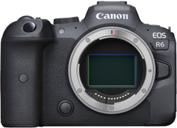 Canon EOS R6 for sale on Swappa