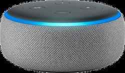 Amazon Echo Dot 3rd Gen - Gray