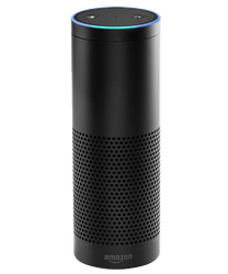 Amazon Echo for sale on Swappa