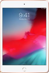 Used iPad Mini 5