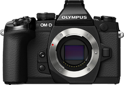 Olympus OM-D E-M1 for sale