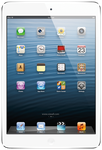 Apple iPad Mini (Verizon) - Black, 16 GB