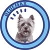 Blue Max Computers