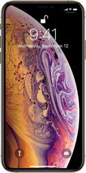 Apple iPhone Xs Max (Unlocked Non-US) [A2101] - Silver, 256 GB