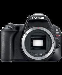 Canon EOS Rebel SL2 for sale
