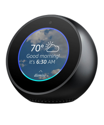 Amazon Echo Spot for sale on Swappa