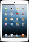 Used Apple iPad mini