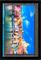 Microsoft Surface Pro 4 - 12.3 Inch